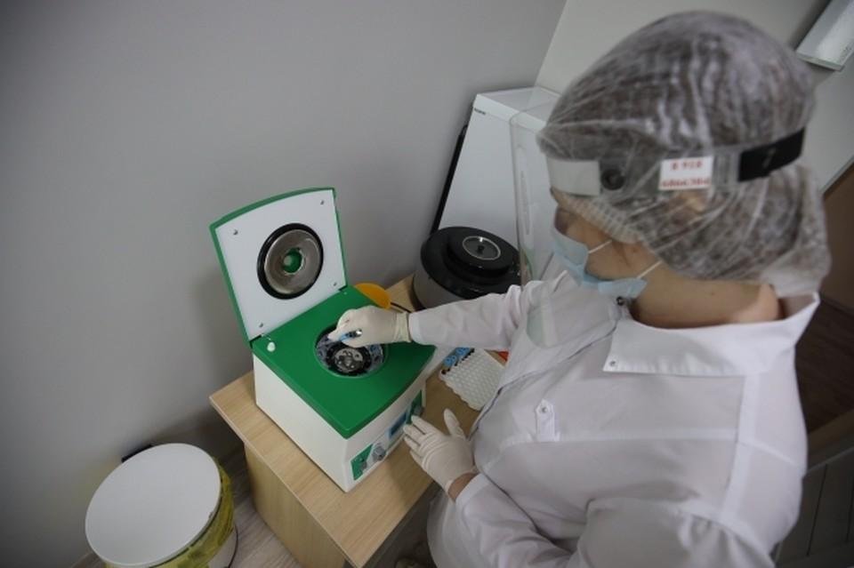 В день в регионе делают более 5 тысяч тестов на ковид.