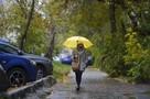 В Воронеже на выходных обещают то солнце, то дождь
