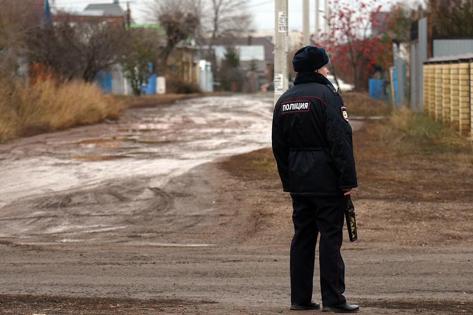 Поступило обращение о матери с малолетним ребёнком, проживающих в сарае на территории деревни Малые Вязёмы. По указанному адресу был направлен наряд полиции