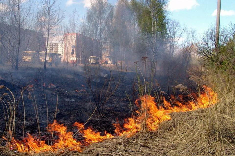 Сотрудники МЧС за минувшие сутки ликвидировали 56 пожаров. Фото: МЧС ДНР
