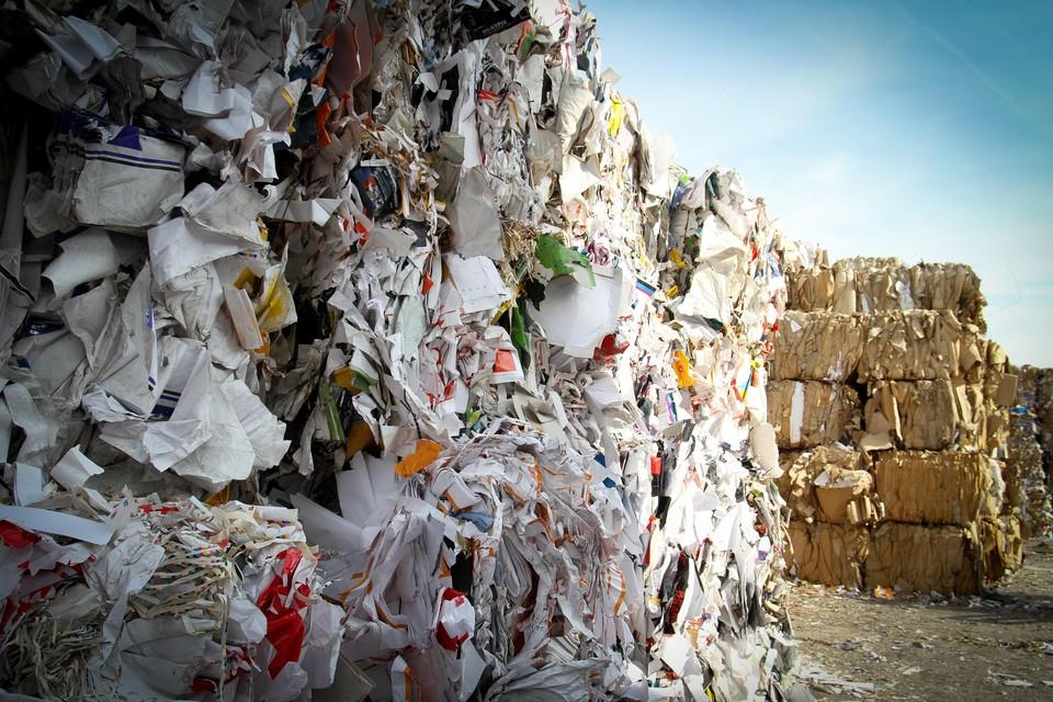 Архангелогородцы не примут мусор москвичей