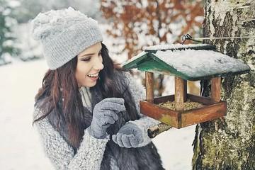 Подготовка дачи к зиме: на что нужно обратить внимание