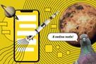 От почтовых голубей до мессенджеров: как росла скорость общения