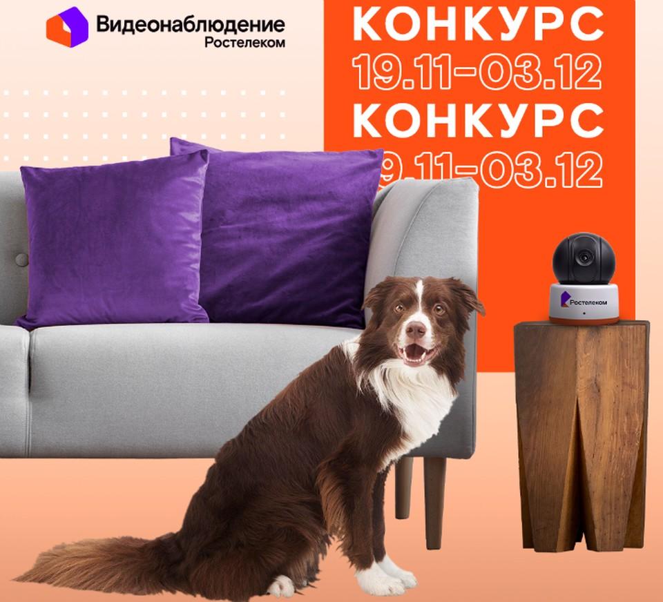 Изображение: ПАО «Ростелеком»