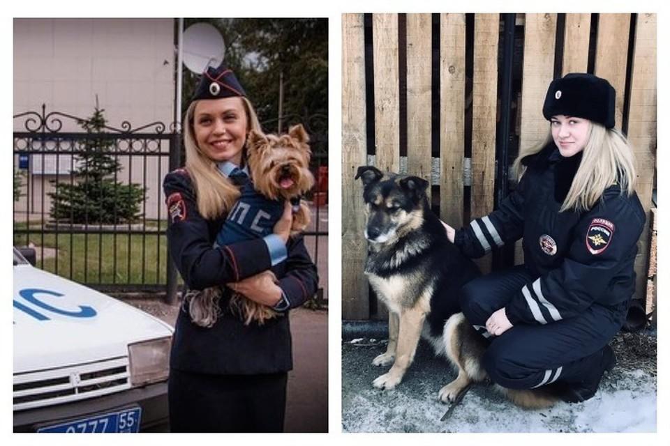 Терьер Гуччи, лабрадор Ричи и кот Кузя: свердловские полицейские поддержали акцию ко Дню домашних животных
