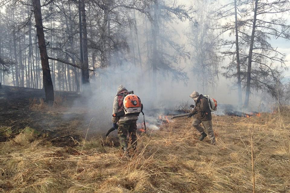 На сегодняшний день пожароопасный сезон еще не закончен