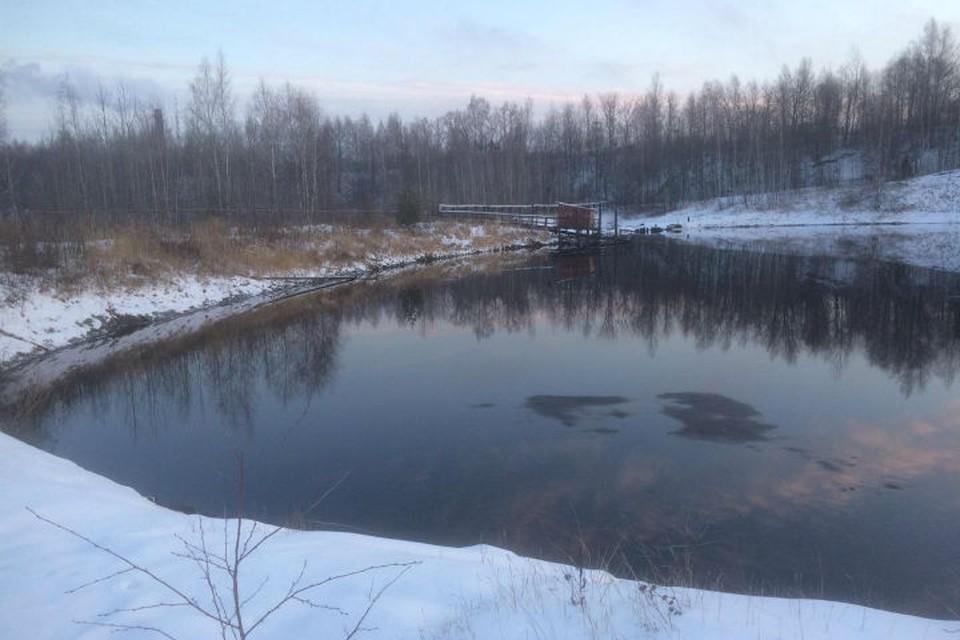 Зимой с территории, которая прилегает к прудам, будут вывозить снег, а также проводить буртование