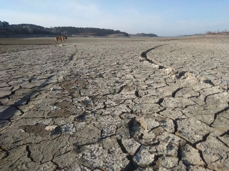 Реки и водохранилища Крыма продолжают пересыхать