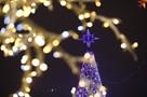 Посмотрите, какие елки в этом году стоят в Минске и в областях Беларуси. Какая лучше?