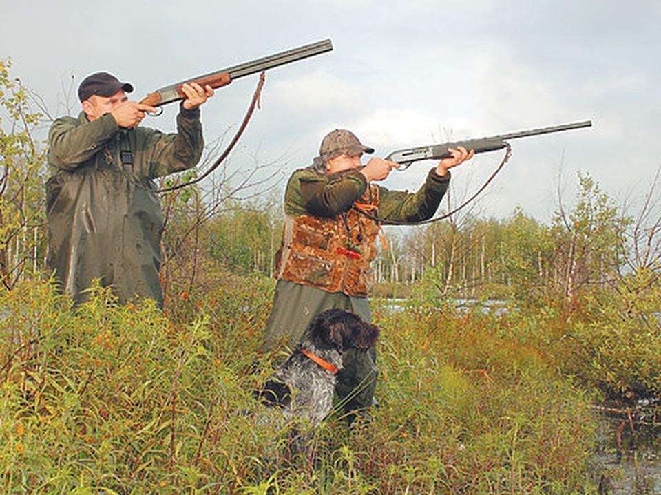 Охотники из Бобейки получили право убивать хоть каждый день (Фото: ohotniki.ru).