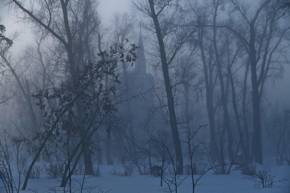 Следующая неделя в Москве станет самой холодной за всю зиму, пообещал климатолог