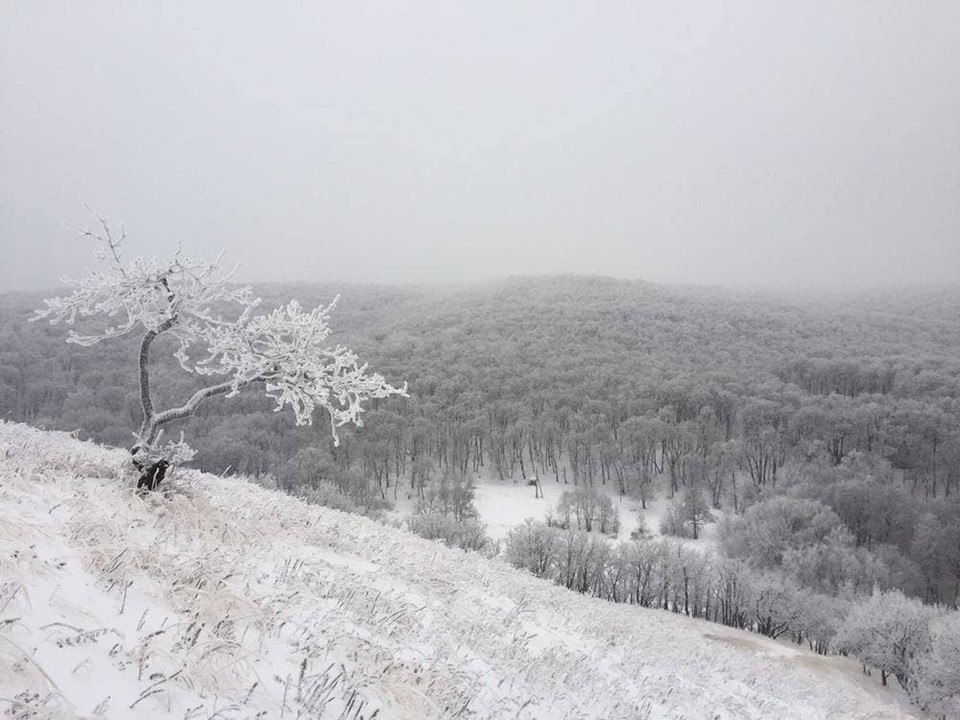 Ближайшие четыре дня погода не порадует Саратовскую область теплом