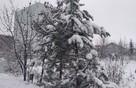 В Курской области обещают 30-градусные морозы