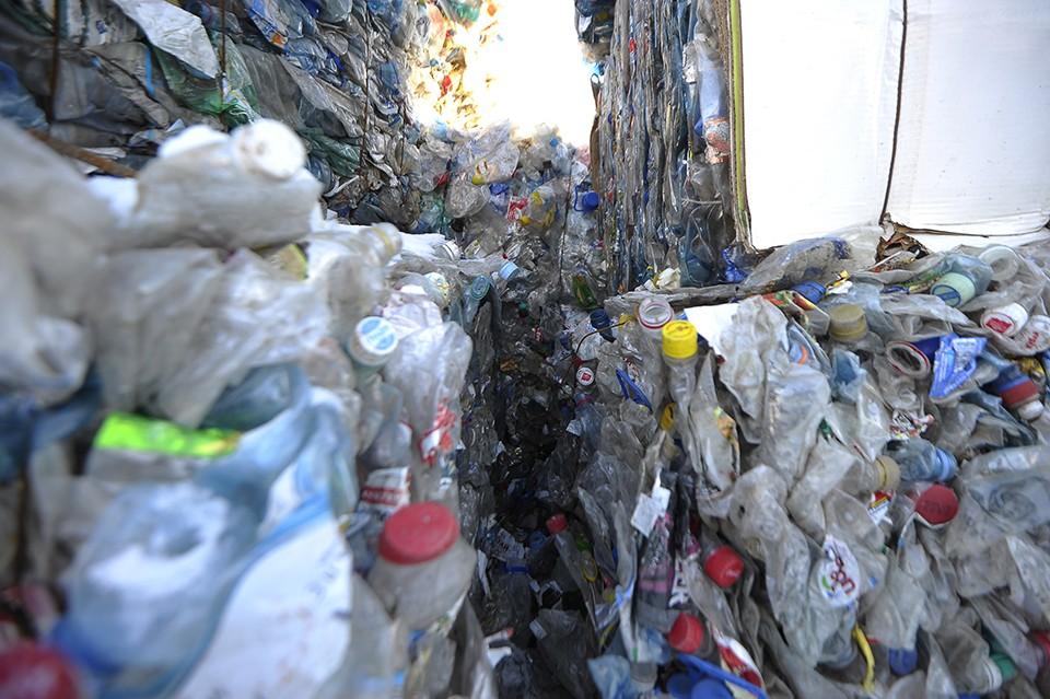 Пластик - одна из главных экологических проблем XXI века.