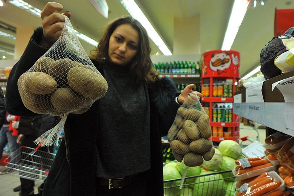 Мелкая картошка скоро может появиться на прилавках российских магазинов