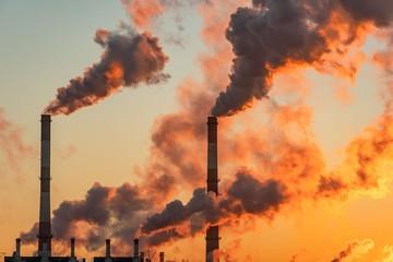 Углеродная нейтральность России – догоним ли мы Китай и Европу к 2050 году?