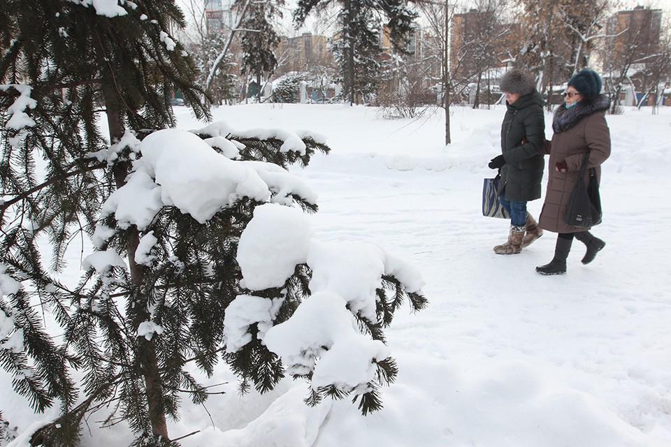 Погода в Иркутске: 10 февраля ожидается ветер до 12 м/с