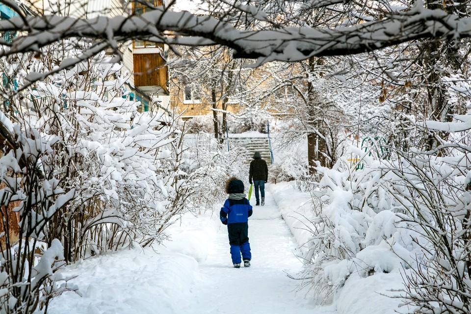 В эти дни в Калуге снежно как никогда