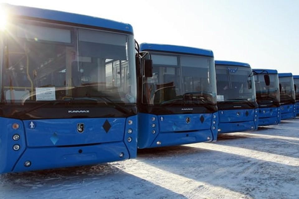 В Кузбасс поступили еще 36 новых автобусов. Фото: АПК
