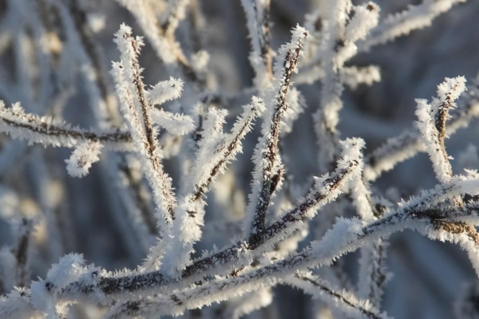Морозы принесли местным жителям не меньшие проблемы, чем снегопады.