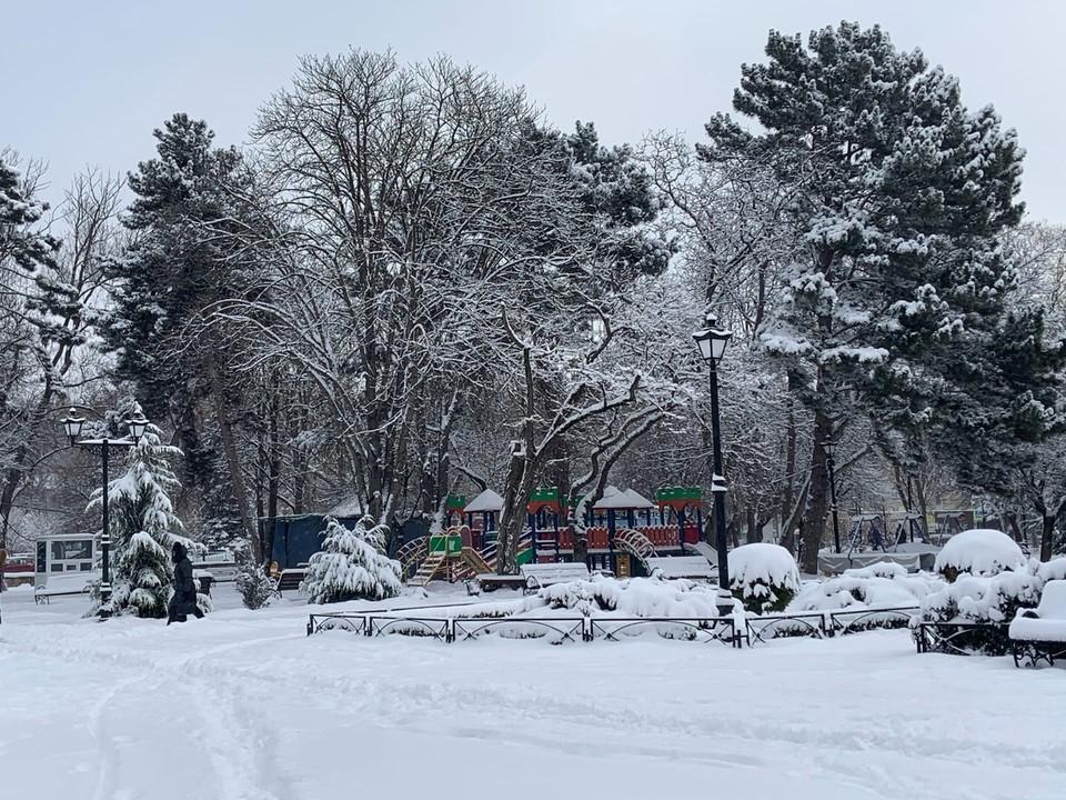 Заснеженный парк Тренева утром не был готов встречать посетителей