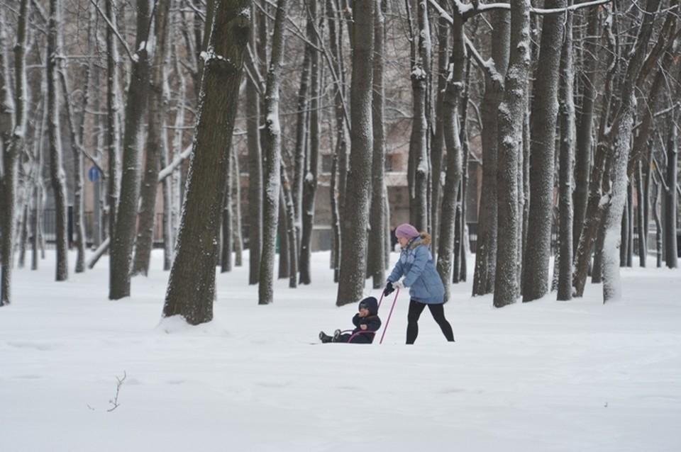 Погода в Кузбассе на 22 февраля 2021 года: снежок на юге и поземка на севере