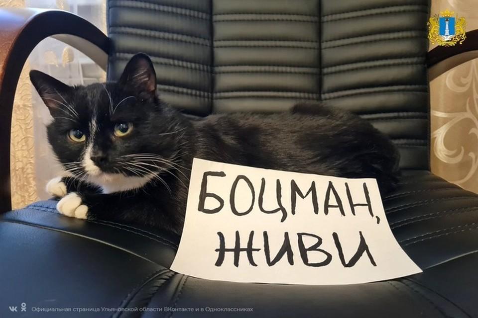 Фото: пресс-служба правительства Ульяновской области