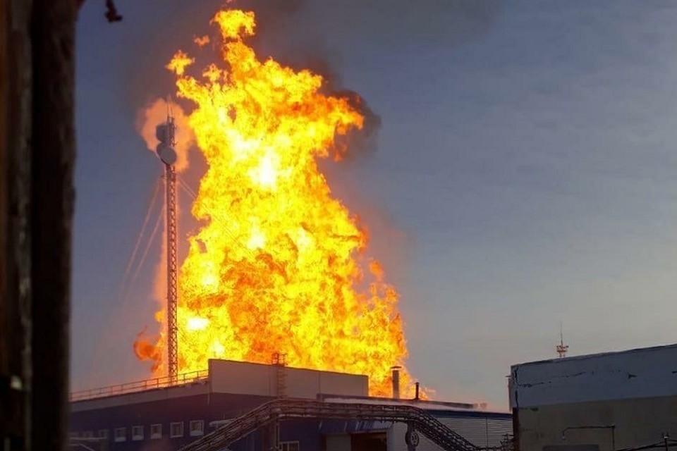 Мощный пожар на месторождении в ЯНАО. Фото: соцсети
