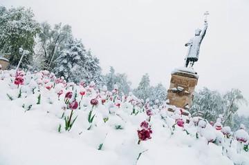 Синоптики огорошили прогнозом на март в Молдове: Зима и снег возвращаются!