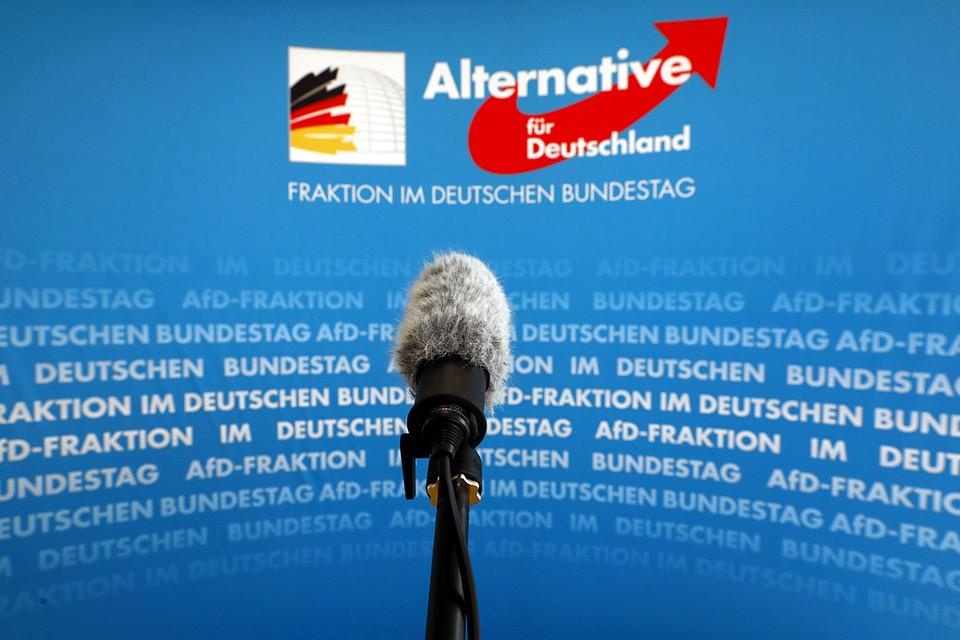 Спецслужбы ФРГ берут под надзор партию «Альтернатива для Германии»