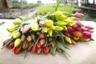 Выбираем цветы на 8 Марта: как купить свежий букет и продлить ему жизнь