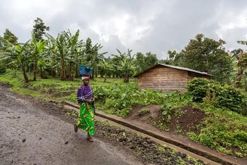 В Демократической Республике Конго открыли гору, на 90% состоящую из золота