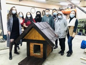 «Дом для друга»: жители Якутска построили 135 теплых будок, чтобы спасти бездомных животных от морозов