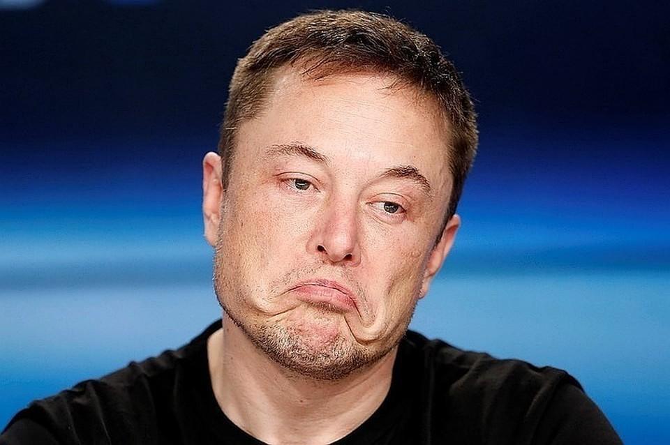 Мужчина повелся на загадочный твит от Илона Маска со словами «Dojo 4 Doge?»