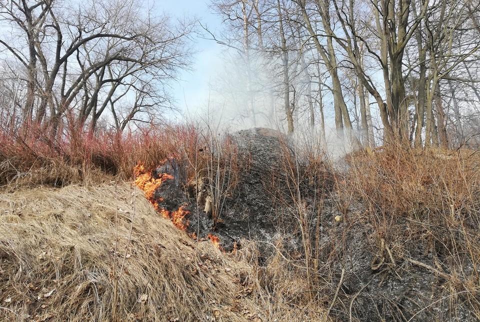 В Орловской области еще не успел сойти снег, а уже начала гореть сухая трава