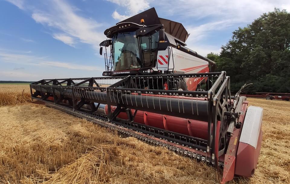 В этом году планируют вырастить не менее 5,6 млн тонн зерновых