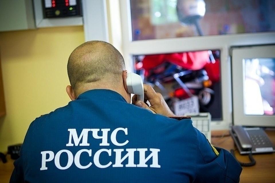 Спасатели Приморья помогают полиции в поисках пропавшего мужчины. Фото: пресс-служба ГУ МЧС России по Приморскому краю