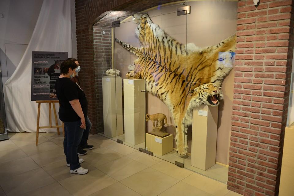 В экспозиции размещены реальные предметы, изъятые на российской таможне.