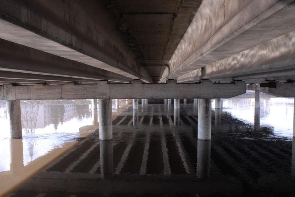 Паводок в Тульской области отступает: в селе Федоровка открыли мост