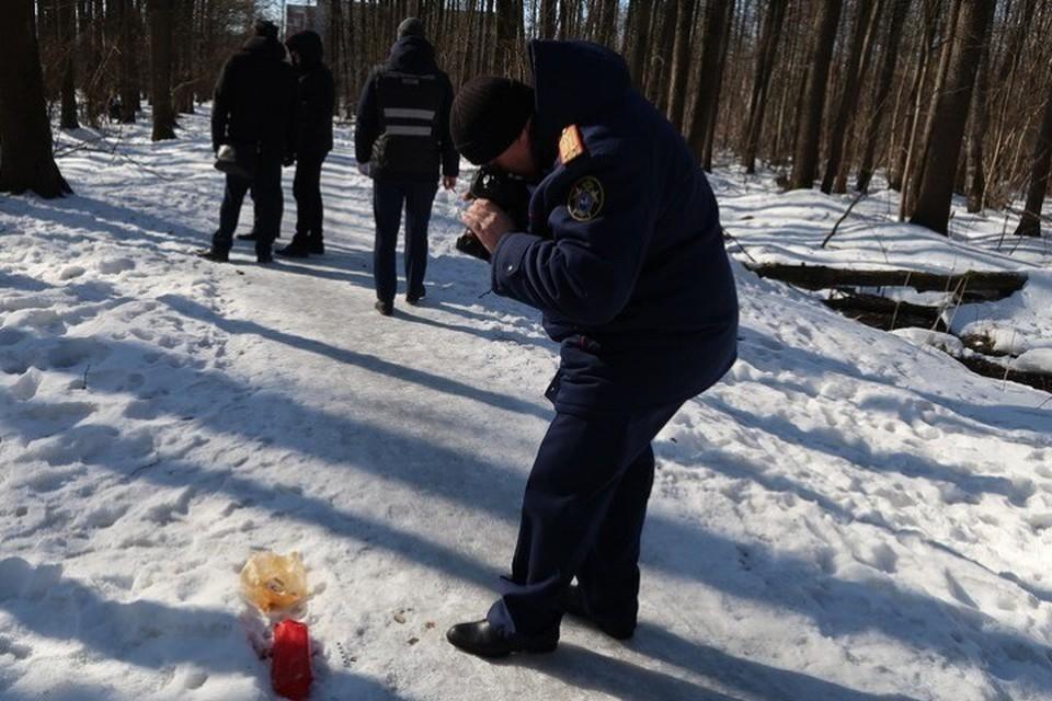 Брянские правоохранители проводят комплекс следственных мер по установлению матери ребенка, тело которого нашли в лесу «Заставище». Фото: СУ СК России по Брянской области.