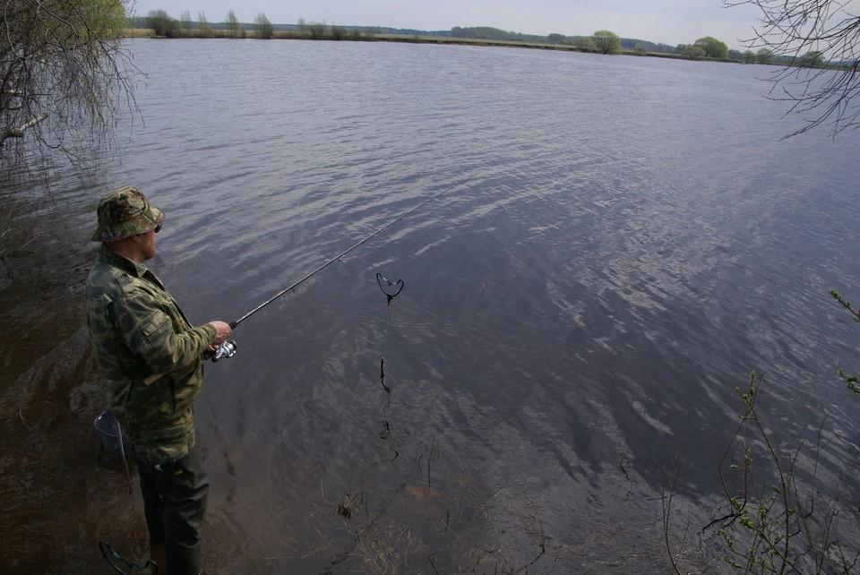 Необычный улов вызвал бурный резонанс в сети. Фото: Ирина Самойлова.