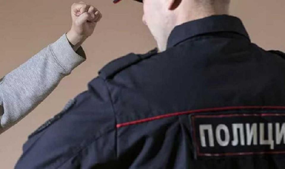 Мужчина осужден по ст. 318 ч. 2 УК РФ (применение насилия к представителю власти)