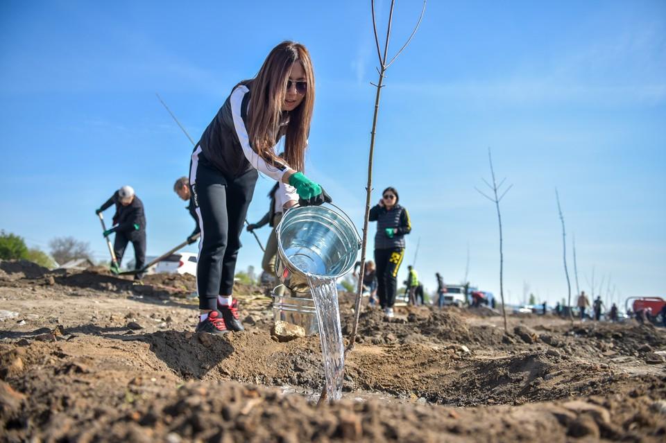 Бишкекчане убирали мусор и сажали деревья.