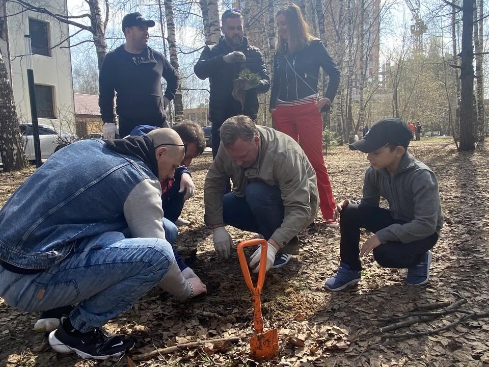 1 365 деревьев и кустарников высадят в мае 2021 года в Советском районе Нижнего Новгорода