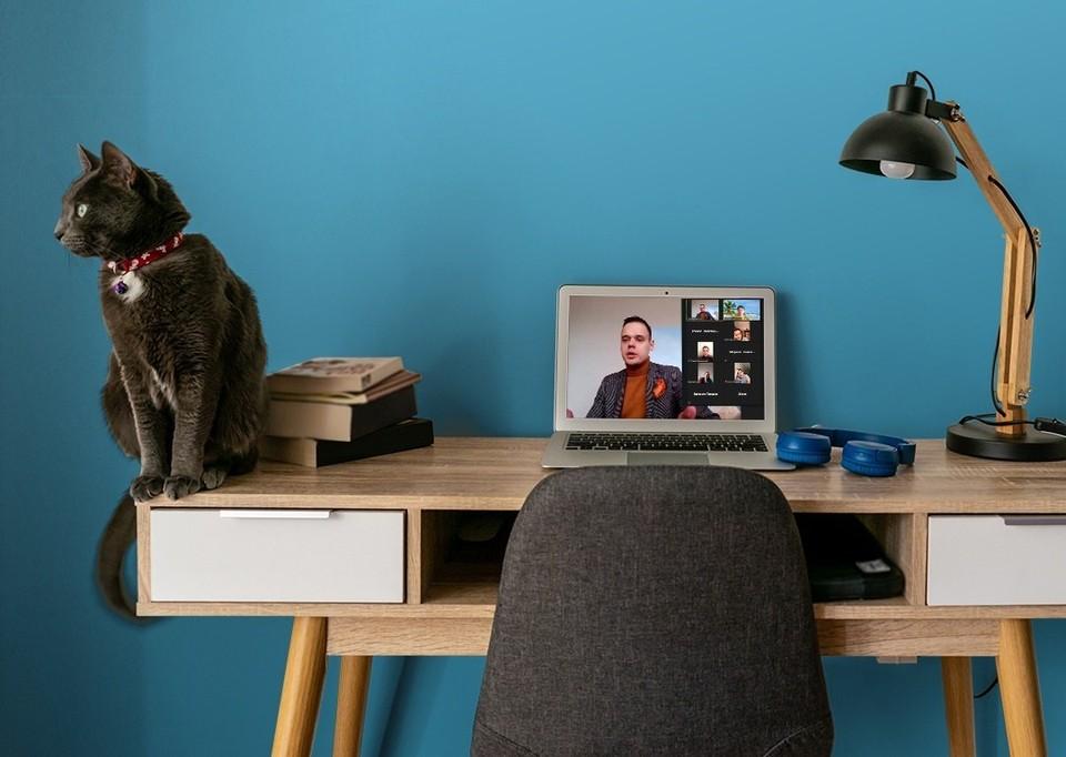 Большинство наших соотечественников хотят сочетать работу дома и в офисе.