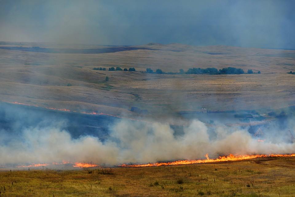 Пал травы может привести к катастрофическим последствиям: огонь легко распространяется на гектары.