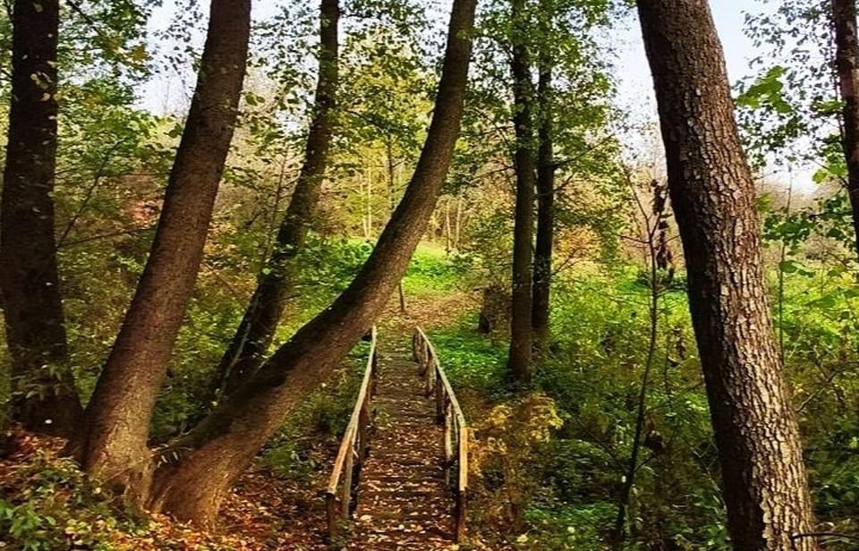 В Курской области множество природных достопримечательностей