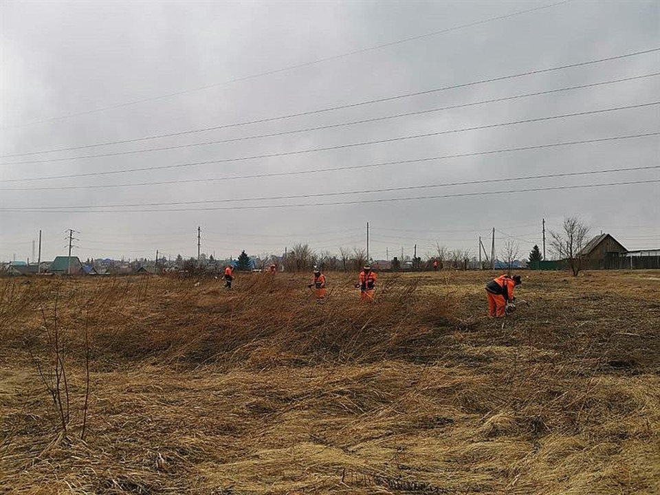 Профилактические покосы сухой травы. Фото: пресс-служба администрации Красноярска
