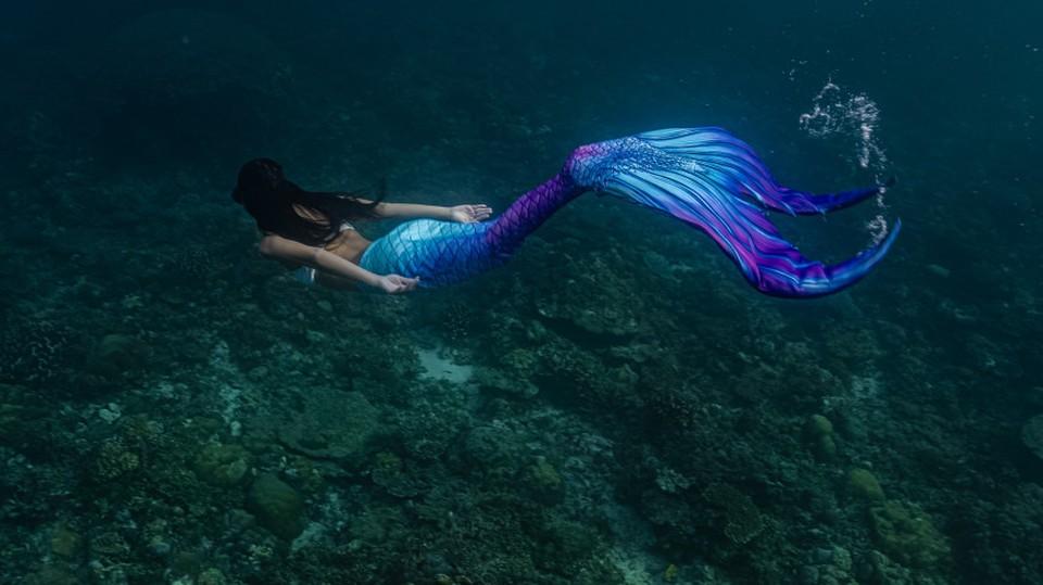 Подводное шоу «русалок» в Китае установило новый рекорд Книги Гиннесса