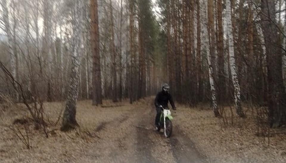 В лесах Миасса за сутки произошло пять пожаров. Фото: ГУ лесами по Челябинской области.